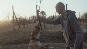 my_dog_killer_film_still