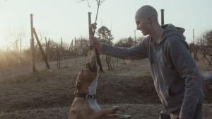 my_dog_killer_film_still